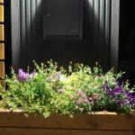 ウッドプランター植物の植え方