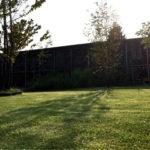 芝生が枯れそうなときの対処方法|メネデール芝肥料使用