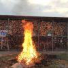【庭焚火】スノーピークの焚き火台だけでは物足りなくなってきたので直焚きしました|乾燥してれば煙は出ない