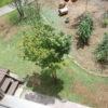 【芝生メンテナンス】草刈り機で芝刈り後に生育不良箇所に目土を追加しました
