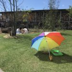 【虫育】庭で獲れたカブトムシ・クワガタのお世話をする