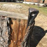 クサビねじり型を使うと原木の皮剥ぎが秒速でできる