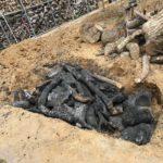焚火の燃えカスを地中に埋めた件