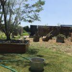 猛暑日の庭いじりはミストがあると相当楽