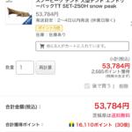 本日限定でスノーピーク エントリーパック TT SET-250Hが実質3割引き!