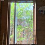 裏庭のスモークゴールデンヨシズが風速7mに耐えた件