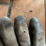薪ストーブ用耐火グローブに穴があいてプチ火傷した件